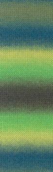 Laine Lang Yarns Jawoll Magic Dégradé-Couleur- 0017