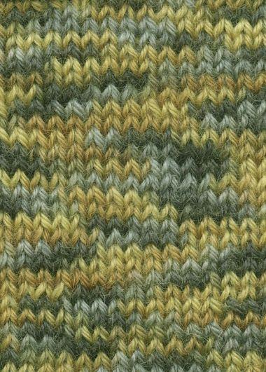 Laine Lang Yarns Super Soxx Color- 4 fach-Couleur- N°901.0248