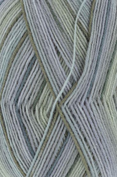 Laine Lang Yarns Super Soxx Color - 4 fach-Couleur- N°901.0290
