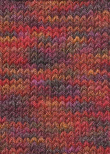 Laine Lang Yarns Super Soxx Color - 4 fach-Couleur- N°901.0293